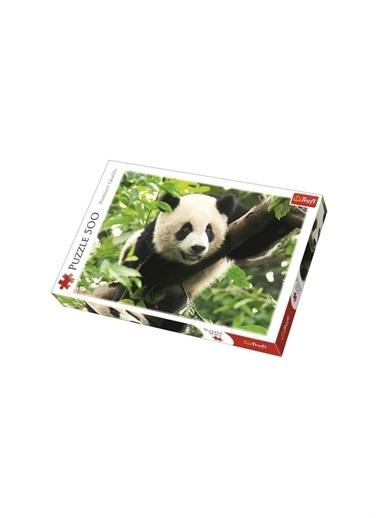 Art Puzzle Art Puzzle Giant Panda 500 Parça Kutu Puzzle Renksiz